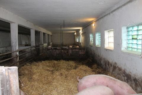 unsere landwirtschaft webseite vom bauernhof richter. Black Bedroom Furniture Sets. Home Design Ideas